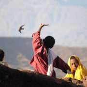 Three Ethiopian boys and a hawk courtesy Patricia Malloy