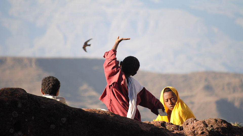 Three Ethiopian boys and a hawk courtesy Patricia Malloy