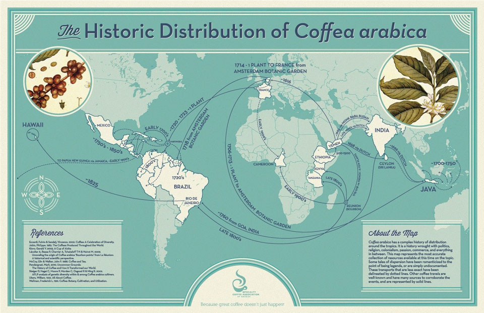 """""""The Historic Distribution of Coffea Arabica"""" map graphic courtesy The Specialty Coffee Association of America"""